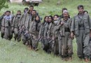 Turcia isi trimite fortele militare in Irak