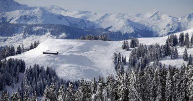 Mii de turisti blocati si victime in statiuni din Austria