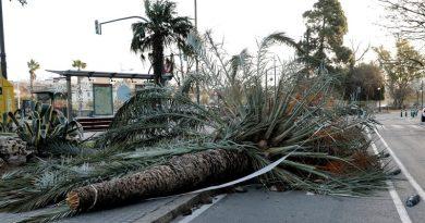 Distrugeri masive in Spania, Portugalia si Franta dupa furtuni
