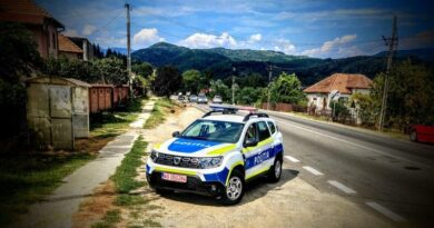 masinile politiei